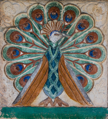 The Peacock for Artists