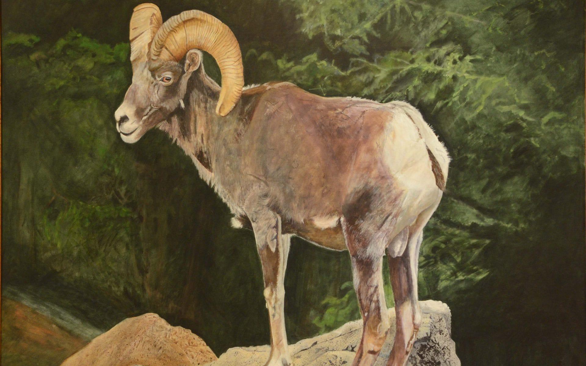 Ellie Fuller Wildlife Paintings