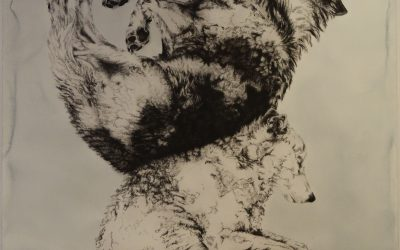 Meredith Feniak Wolves