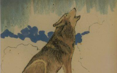 Joseph Morgan Prandoni Howling Wolf