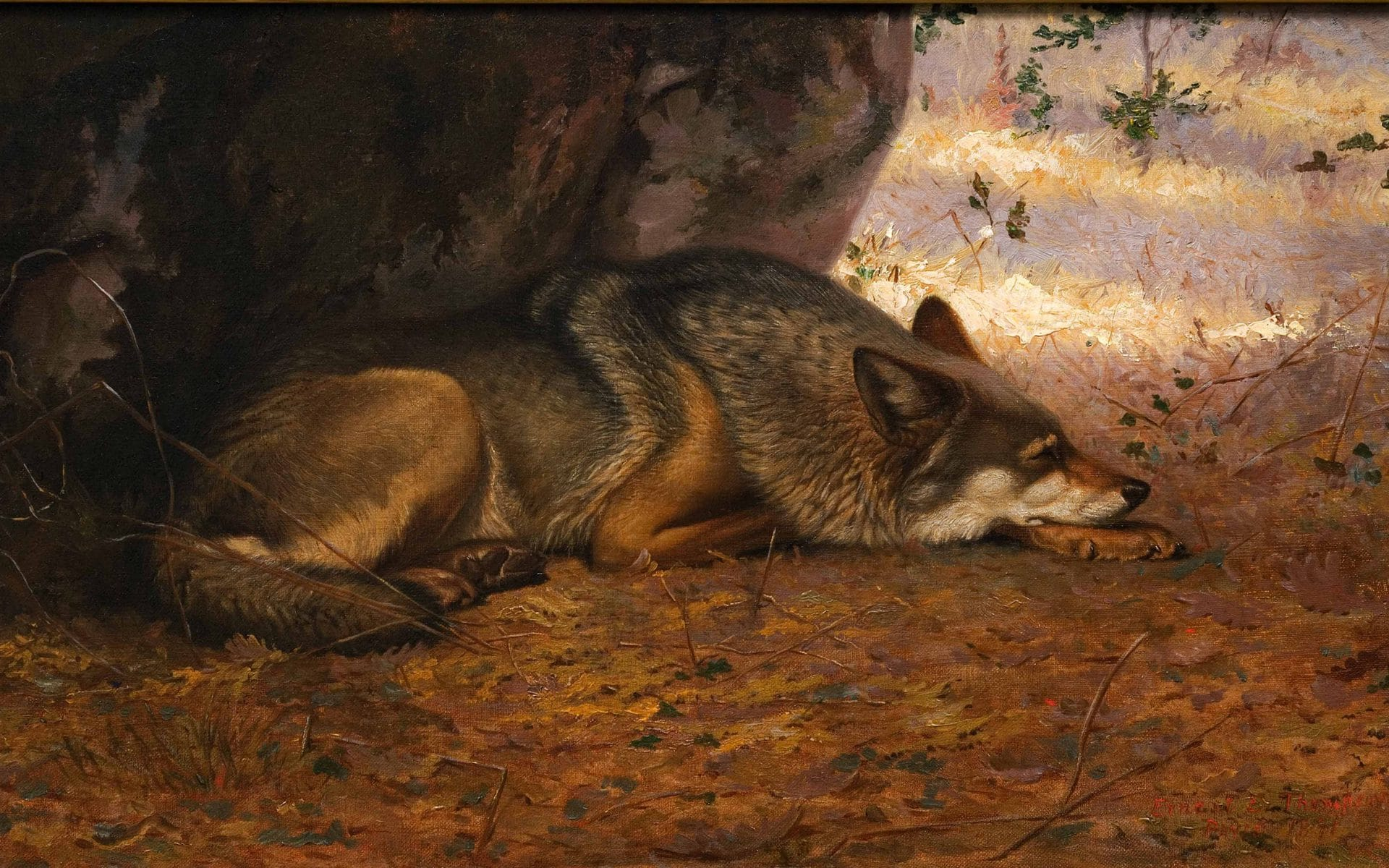 Sleeping Wolf in Paris Biography
