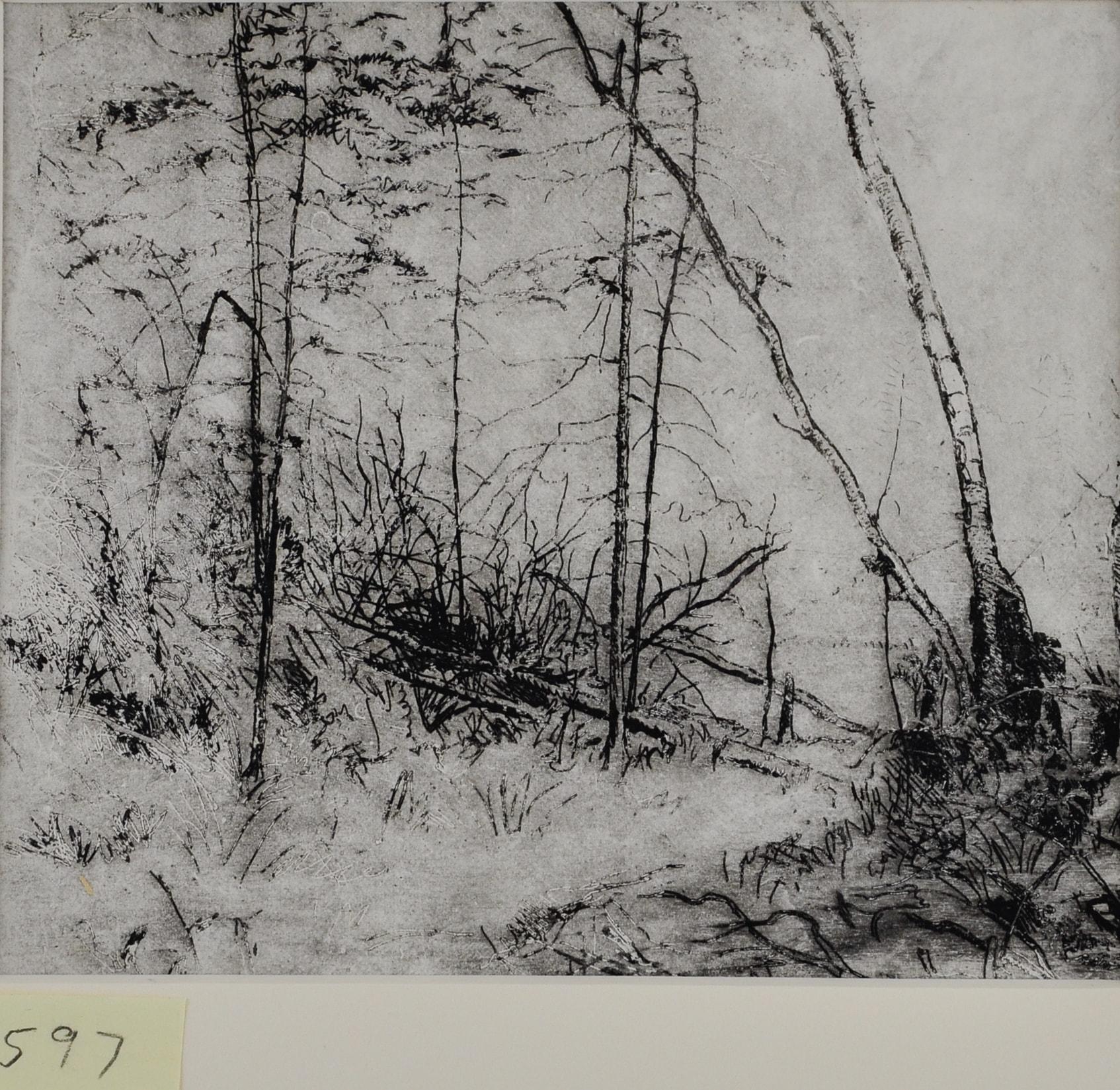 Seton's Drawn Landscapes