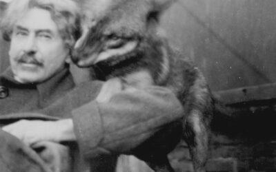 Ernest Thompson Seton, Lobo and Migratory Birds